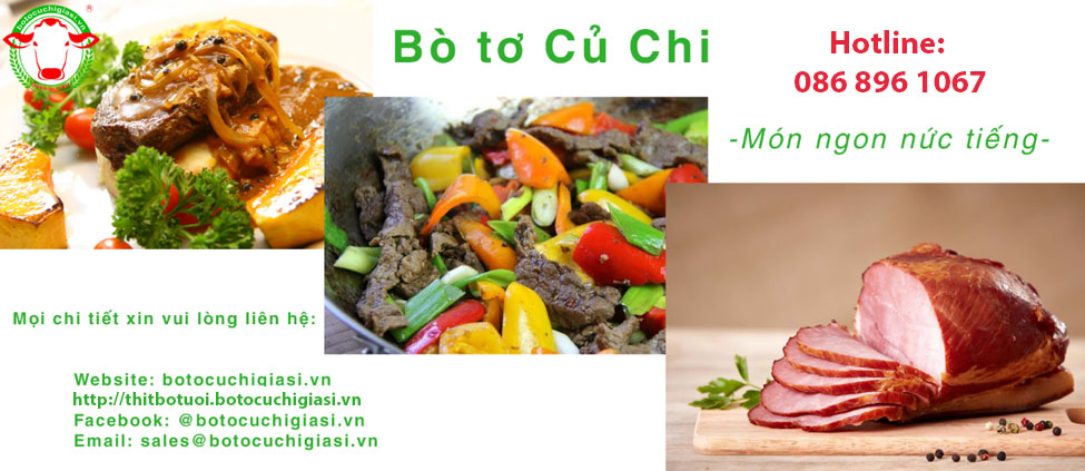 bo-to-cu-chi